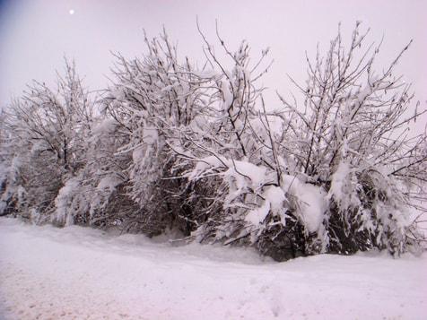 Der Winter kann auch trügerisch romantisch erscheinen, Foto von Khaled aufgenommen