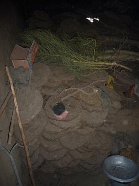 In Shila's Küche, Reserve von brennmaterial (getrockneter Kuhmist)